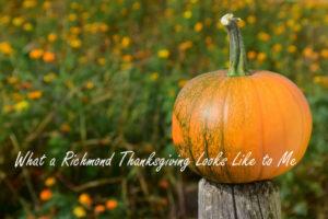 pumpkin-1710278_1920