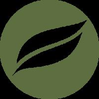Wildtree Media Logo Green PNG