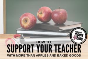 Support Teacher