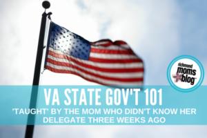 va state govt 101